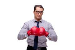 Agresywny biznesmen z bokserskimi rękawiczkami odizolowywać na bielu Fotografia Royalty Free