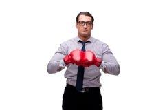 Agresywny biznesmen z bokserskimi rękawiczkami odizolowywać na bielu Zdjęcia Royalty Free