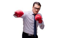 Agresywny biznesmen z bokserskimi rękawiczkami odizolowywać na bielu Zdjęcie Stock