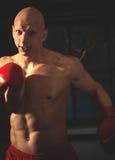 Agresywny bokser w szkoleniu Fotografia Stock