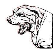 Agresywny pies Zdjęcia Stock