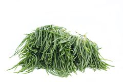 Agretti Royalty Free Stock Image