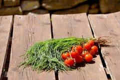 Agretti i pomidory Fotografia Stock