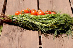Agretti and tomatoes Royalty Free Stock Image