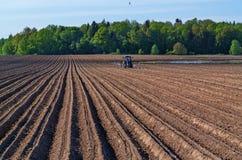 Agricaltural pole z ciągnikiem Zdjęcie Royalty Free