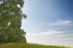 agricaulture krajobrazu Obrazy Royalty Free