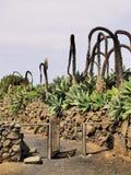 Agricola El Patio Museum, Tiagua, Lanzarote Royalty Free Stock Images