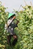 Agricoltore Fotografie Stock Libere da Diritti