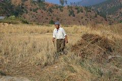Agricoltore agricolo Surveying i suoi campi nel Bhutan rurale Immagini Stock Libere da Diritti