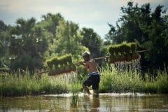 Agricoltore Agriculture dell'uomo Fotografie Stock Libere da Diritti