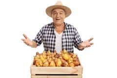 Agricoltore allegro con la cassa piena delle pere e di gesturing Fotografie Stock Libere da Diritti