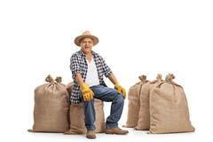 Agricoltore anziano allegro che si siede sui sacchi della tela da imballaggio Fotografia Stock