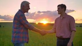 Agricoltore anziano che accoglie giovane uomo d'affari e che stringe le mani, stanti sul giacimento di grano, bella natura con il stock footage