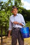 Agricoltore anziano che fertilizza in un frutteto Immagine Stock Libera da Diritti