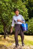 Agricoltore anziano che fertilizza in un frutteto Fotografia Stock