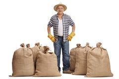Agricoltore anziano che sta fra i sacchi della tela da imballaggio Immagine Stock Libera da Diritti