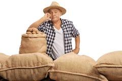 Agricoltore anziano deludente che posa con i sacchi della tela da imballaggio Fotografia Stock Libera da Diritti
