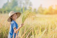 Agricoltore asiatico dei bambini sul giacimento giallo del riso Immagine Stock Libera da Diritti