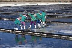 Agricoltore asiatico, piantagione del sale, salina vietnamita Fotografia Stock