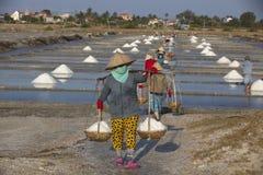 Agricoltore asiatico, piantagione del sale, salina vietnamita Immagine Stock Libera da Diritti