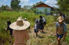 Agricoltore asiatico tradizionale Immagine Stock