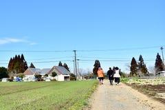 Agricoltore in azienda agricola nel Giappone Kagoshima Sakurajima Fotografie Stock Libere da Diritti