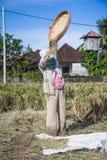 Agricoltore Bali Immagine Stock