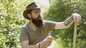 Agricoltore barbuto dell'uomo nell'azienda agricola con il fondo della campagna Ragazzo dell'agricoltore prendere la verdura un g archivi video