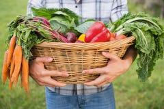 Agricoltore bello con il canestro di veg Immagine Stock Libera da Diritti