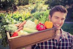 Agricoltore bello con il canestro di veg Fotografia Stock Libera da Diritti