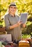 Agricoltore biondo sorridente che per mezzo di una compressa Immagini Stock