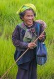 Agricoltore birmano nel Myanmar Immagini Stock Libere da Diritti