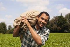 Agricoltore brasiliano del caffè alla piantagione di caffè Immagini Stock Libere da Diritti