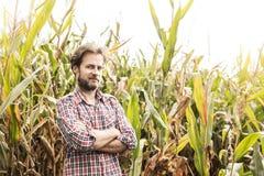 Agricoltore caucasico nella camicia di plaid e nel campo di grano - agricoltura Immagini Stock Libere da Diritti
