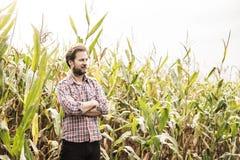 Agricoltore caucasico nella camicia di plaid e nel campo di grano - agricoltura Immagine Stock Libera da Diritti