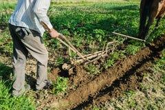 Agricoltore che ara una terra Fotografie Stock Libere da Diritti
