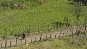Agricoltore che cammina sulla strada campestre Regno del Bhutan Fotografia Stock Libera da Diritti