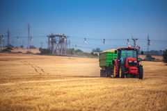 Agricoltore che conduce trattore agricolo e rimorchio in pieno di grano Fotografie Stock