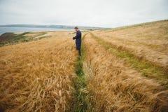Agricoltore che controlla i suoi raccolti nel campo Fotografie Stock