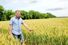 Agricoltore che controlla il giacimento della soia La tecnologia unica di crescita Fotografie Stock
