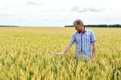 Agricoltore che controlla il giacimento della soia La tecnologia unica di crescita Fotografie Stock Libere da Diritti
