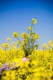 Agricoltore che controlla la qualità del seme di ravizzone Fotografie Stock