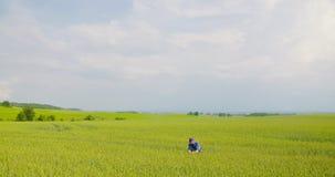 agricoltore che esamina il settore agricolo video d archivio