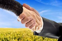 Agricoltore che fa un affare Fotografie Stock Libere da Diritti