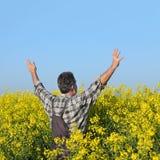 Agricoltore che gesturing nel giacimento sbocciante del seme di ravizzone Immagine Stock