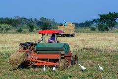 Agricoltore che guida trattore nei campi Fotografia Stock Libera da Diritti