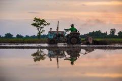 Agricoltore che guida trattore nei campi durante il raccolto in countrysi Fotografie Stock
