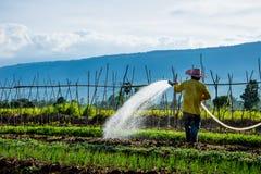 Agricoltore che innaffia nel campo Fotografie Stock Libere da Diritti