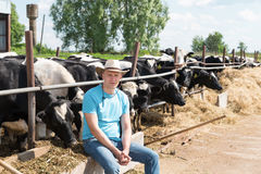 Agricoltore che lavora all'azienda agricola con le mucche da latte Immagini Stock Libere da Diritti