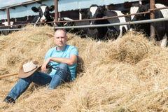 Agricoltore che lavora all'azienda agricola con le mucche da latte Immagine Stock Libera da Diritti